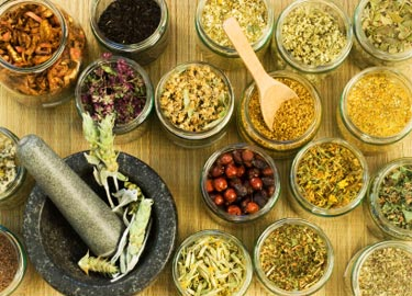 type of siddha treatment where pure herb are used as drugs single or compound
