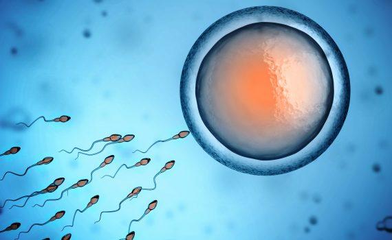 tamil siddha medicine for male infertility aanmai kuraivu
